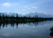 Pine trees line a glassy river in the wilderness of Alaska